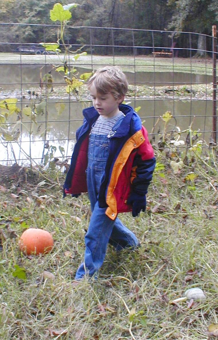 Where is that pumpkin?